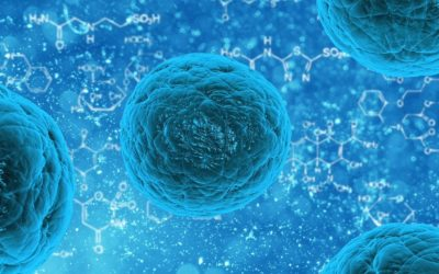 Can Saunas Kill Corona Virus?